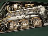 Aston Martin DB4 Vantage GT V (1963) images