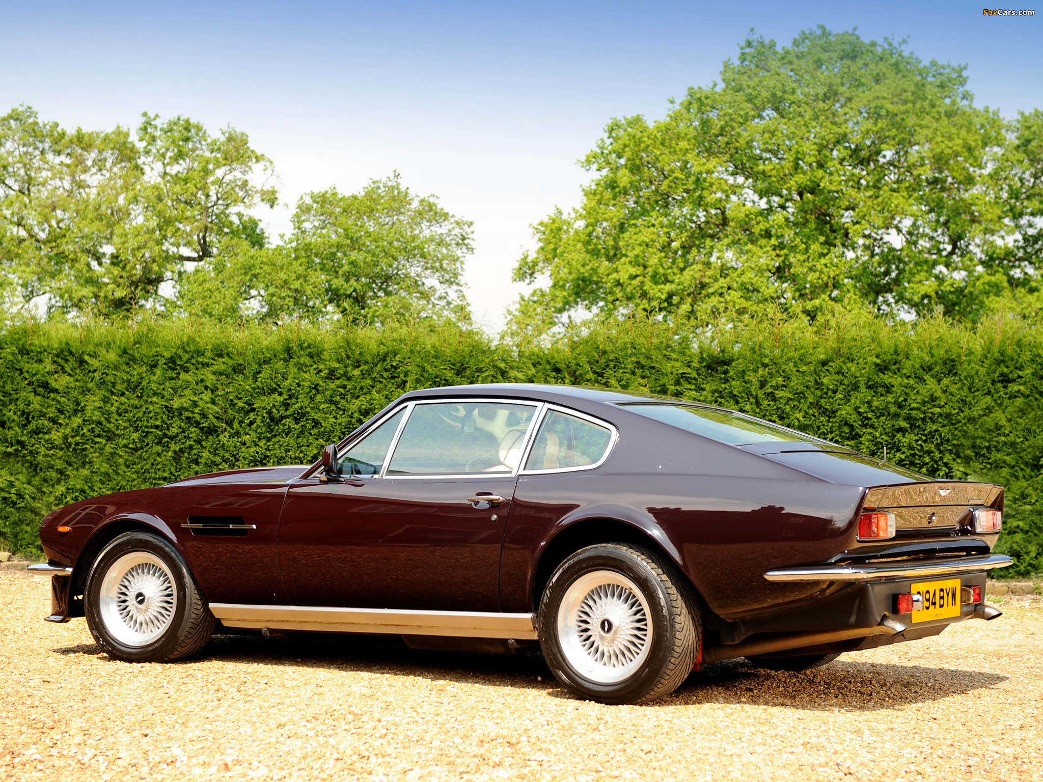 Aston Martin V8 Vantage Uk Spec 1977 1989 Pictures