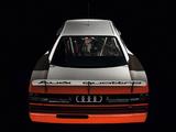 Audi 200 quattro Trans Am (1988) images