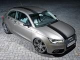 HS Motorsport Audi A1 8X (2010) pictures