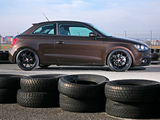 Pogea Racing Audi A1 8X (2011) pictures