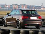 Images of Pogea Racing Audi A1 8X (2011)