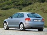 Audi A3 2.0 TDI 8P (2003–2005) images