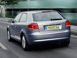 Audi A3 2.0 TDI 8P (2003–2005) photos