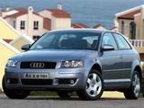 Audi A3 2.0 TDI ZA-spec 8P (2003–2005) pictures