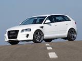 Hofele Design Audi A3 Sportback 8PA (2005–2008) photos