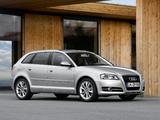 Audi A3 Sportback TFSI 8PA (2010) images