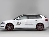 Audi A3 e-Tron Prototype 8PA (2011) images