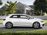 Audi A3 1.8T S-Line quattro 8V (2012) images