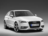 Audi A3 2.0 TDI 8V (2012) photos