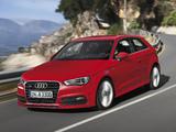 Audi A3 1.8T S-Line quattro 8V (2012) photos