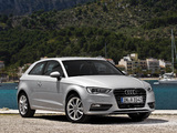 Audi A3 2.0 TDI 8V (2012) pictures