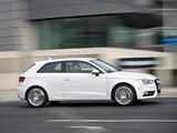 Audi A3 1.8T UK-spec 8V (2012) pictures