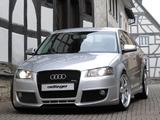 Oettinger Audi A3 Sportback 8PA photos