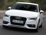 Images of Audi A3 2.0 TDI 8V (2012)