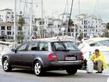 Audi A6 2.0 Avant (4B,C5) 2001–04 photos