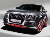 Audi Q5 Custom Concept 2009 pictures