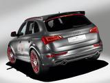 Images of Audi Q5 Custom Concept 2009