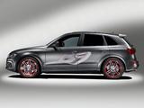Photos of Audi Q5 Custom Concept 2009