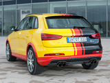 Images of MTM Audi Q3 2012