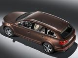 Audi Q7 3.0 TDI quattro 2009 photos