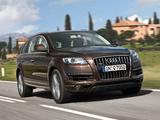 Audi Q7 3.0 TDI quattro 2009 pictures