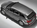 Images of Audi Q7 4.2 TDI quattro 2009