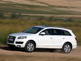 Photos of Audi Q7 3.0 TDI quattro 2009