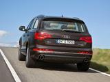 Pictures of Audi Q7 3.0 TDI quattro 2009