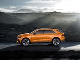Audi Q8 Sport Concept 2017 images