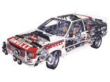 Audi Quattro Group 4 Rally Car (85) 1981–82 photos