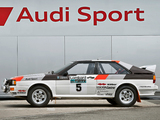 Audi Quattro Group 4 Rally Car (85) 1981–82 pictures