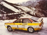 Audi Quattro Group B Rally Car (85) 1983–86 pictures