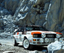 Images of Audi Quattro Group 4 Rally Car (85) 1981–82