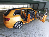 Schwabenfolia Audi RS3 Sportback Gold Orange (8PA) 2013 wallpapers