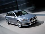 Audi RS4 Avant (B7,8E) 2006–08 wallpapers
