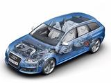 Photos of Audi RS6 Avant (4F,C6) 2008–10