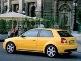 Audi S3 (8L) 2001–03 photos