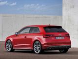 Audi S3 (8V) 2013 images