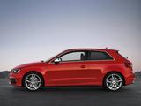 Audi S3 (8V) 2013 photos