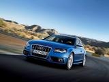Photos of Audi S4 Avant (B8,8K) 2009–11