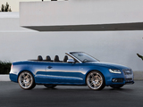 Images of Audi S5 Cabriolet 2009–11