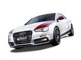 Images of Audi S5 by Eibach 2012