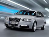 Images of Audi S6 Avant (4F,C6) 2008