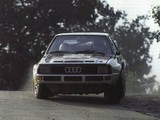Audi Sport Quattro Group B Rally Car 1984–86 images