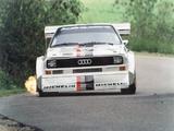 Audi Sport Quattro S1 Pikes Peak Hill Climb 1986–87 images