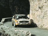 Images of Audi Sport Quattro Group B Rally Car 1984–86