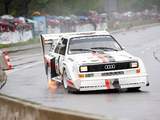 Audi Sport Quattro S1 Pikes Peak Hill Climb 1986–87 wallpapers
