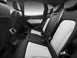 Audi SQ5 TDI (8R) 2013 images