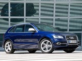 Audi SQ5 TDI (8R) 2013 photos